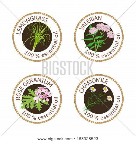 Set of 100 essential oils labels. Rose Geranium, lemongrass, Chamomile, Valerian symbols. Logo collection. Vector illustration. Brown stamps, realistic. For cosmetics spa health care aromatherapy