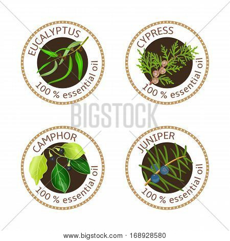 Set of 100 essential oils labels. Eucalyptus, cypress, camphor tree, juniper symbols. Logo collection. Vector illustration. Brown stamps, realistic. For cosmetics, spa health care aromatherapy tags