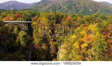 Bridge in crossing the Naruko Gorge