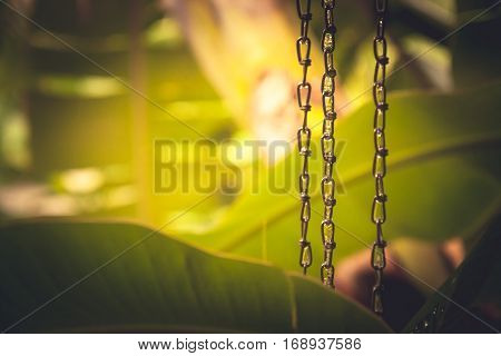 Tropical background with lush tropical foliage during tropical rain with rain drops on chains in Chinese meditation garden