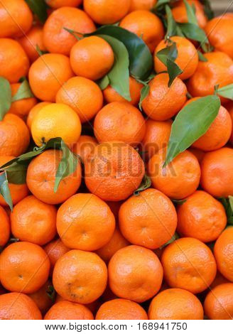 Organic Mandarins And Orange Clementines With Peel Untreated Wit