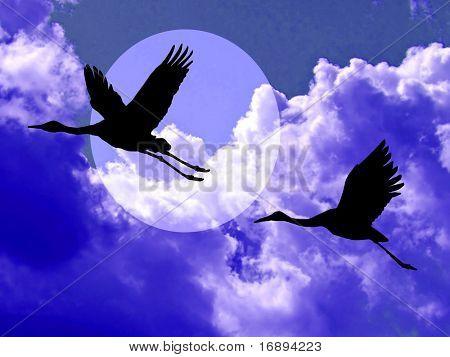 crane in cloudy sky poster