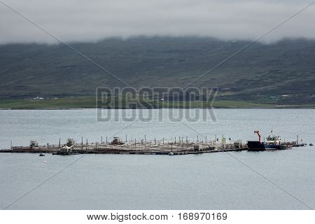 North Coast Scotland - June 6 2012: An industrial size fish pen on Loch Eriboll with green foggy hills in the background. People machines and a boat at the large framed and netted platform in bluish-gray water.