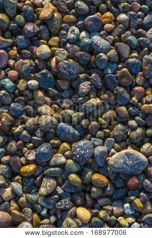 Beautiful colorful stones rocks pebbles on California beach sunlit wet background vertical