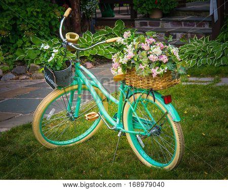 Old Green bike as yard decor piece