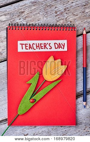 Notebook, double-sided pencil and flower. Friendly congratulation for a teacher.
