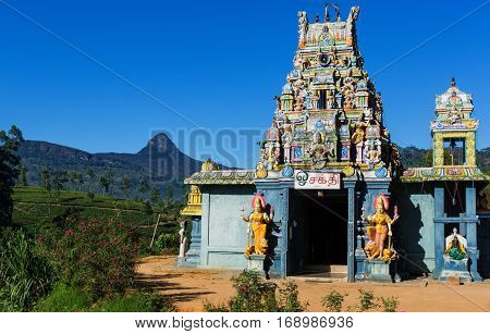 Adam's Peak of Sri lanka & a Hindu Temple surrounded by the tea fields of maskeliya City