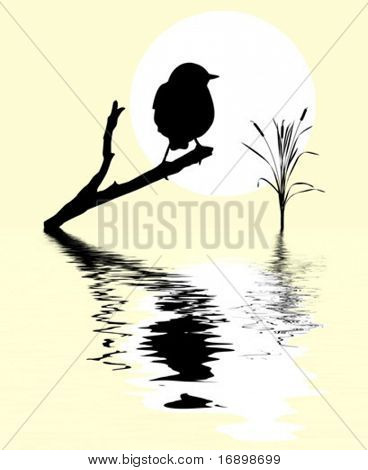 vector small bird on branch tree amongst water