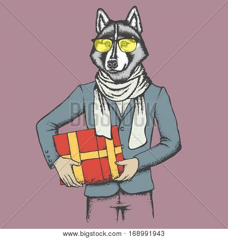 Vector dog concept. Hand draw vector siberian husky dog on human body. Husky in human suit with gift