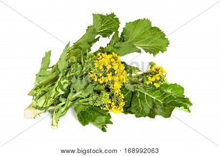 Broccoli Rabe Isolated