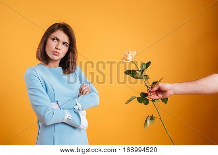 Sad frowning young woman receiving rose and standing with arms crossed over yellow background