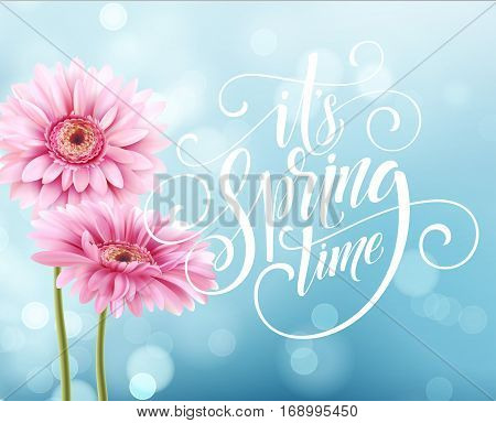 Gerbera Flower Background and Spring Lettering. Vector Illustration EPS10