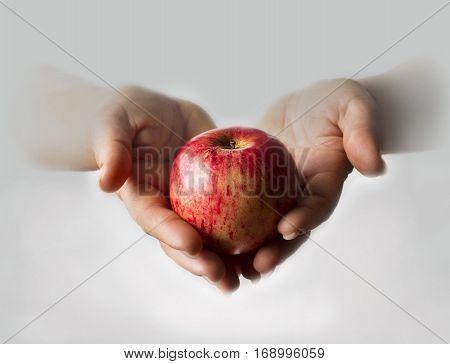 biblical story temptation apple apple in hands