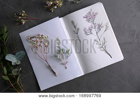 Plants and sketchbook with drawings on grey background