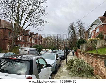 LONDON - JANUARY 10: Used Christmas Trees dumped in the street after Twelfth Night on January 10, 2017 in London, UK.