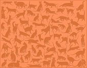 Collection of vector cats in various positions as a background poster