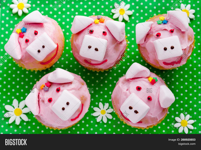 Pig Cupcakes Animal Image Photo Free Trial