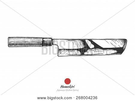 Hamokiri, Japanese Kitchen Knife. Literally Pike Conger Cutter. Vector Hand Drawn Illustration In Vi