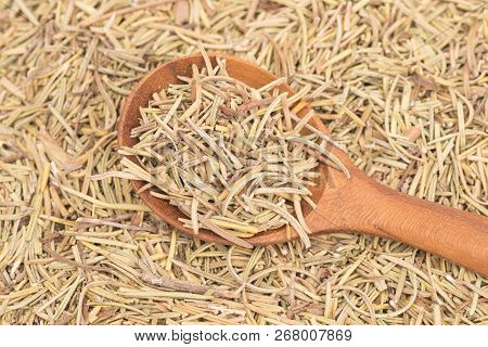 Dried Rosemary Leaves In Woooden Spoon On Rosemary Leaves Background - Rosmarinus Officinalis