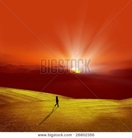 an image of sunset and the fields