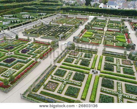 Vegetable gardens at the Chateau de Villandry