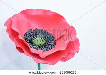 Large Giant Paper Flowers. Big Pink, Red Poppy Made From Paper. Diy Big Paper Flower Made From Corru