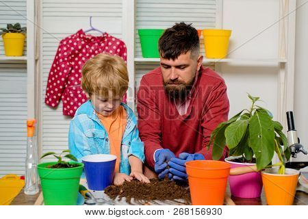 Father And Son Put Flowers Together. Plants For Home. Family Hobby, Upbringing. Education. The Weeke