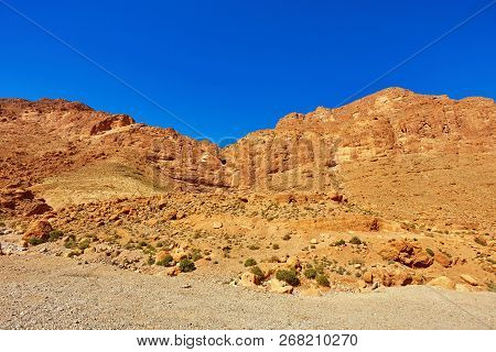 Todgha Gorge Or Gorges Du Toudra Is A Canyon In High Atlas Mountains Near The Town Of Tinerhir, Moro