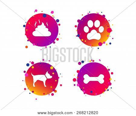 Pets Icons. Dog Paw And Feces Signs. Clean Up After Pets. Pets Food. Gradient Circle Buttons With Ic