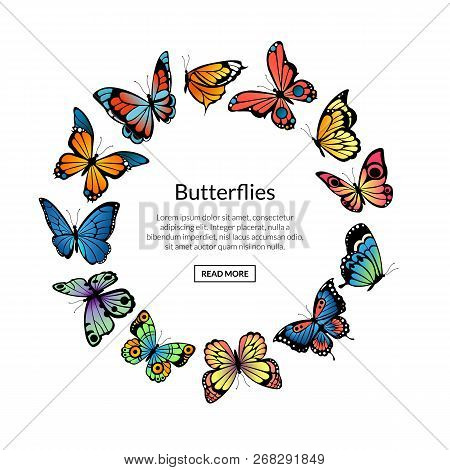 Vector Decorative Butterflies In Circle Shape With Place For Text Illustration. Butterfly Decoration