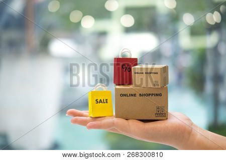 Bag Shopping And Brown Paper Box In Hand. Concept Of Promotion For Planning Online Shopping Sale Spe