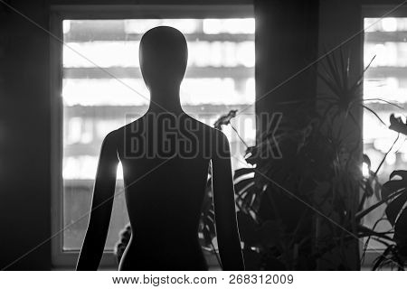 Human Female Mannequin Standing In The Dark Near The Window