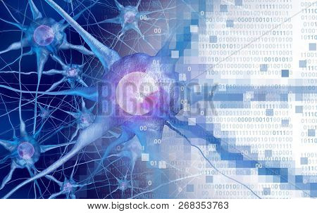Ai And Neuroscience Aor Digital Neurology Brain Function Concept As Artificial Intelligence Or Virtu