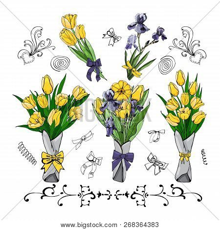 Set Of  Bouquets With Yellow Tulips And Viollet Iris. Hand Drawn Colored  Sketch With Tulip And Iris