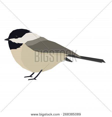 Forest Wild Life Isolated Vector Animals Geometric Chickadee Set