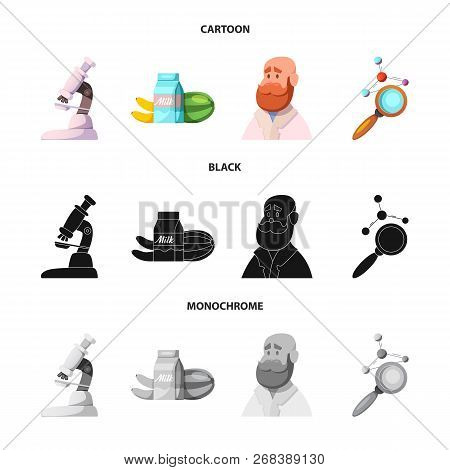 Vector Illustration Of  And  Symbol. Set Of  And  Stock Vector Illustration.