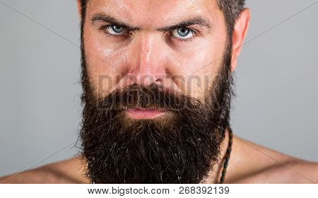 Portrait Of Masculinity. Sexy Look Of Male. Hipster Man With Beard, Mustache. Sexy Man. Portrait Bru