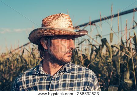 Portrait Of Confident Successful Farmer In Corn Field, Looking Determined And Full Of Confidence