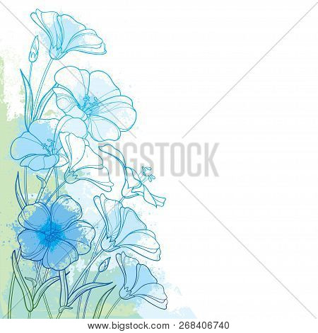 Vector Corner Bouquet With Outline Flax Plant Or Linseed Or Linum. Flower Bunch, Bud And Leaf In Pas