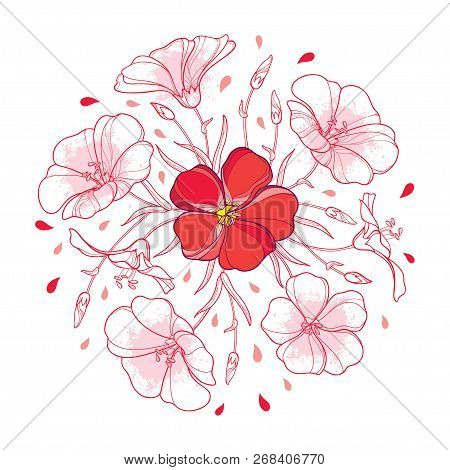Vector Round Bouquet With Outline Flax Plant Or Linseed Or Linum Flower, Bud And Leaf In Pastel Red