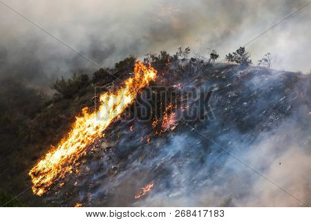 Bright Orange Flames And Smoke On Burning Hillside During California Wildfire.