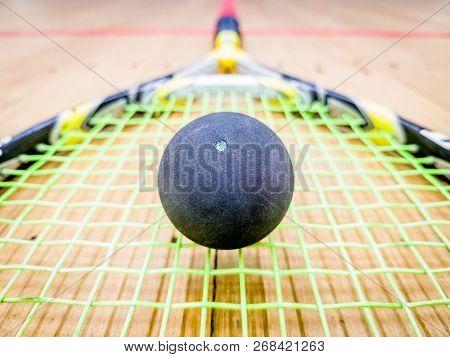 Single Dot Squash Ball On Racquet Stings