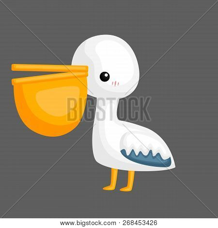 A Vector Of A Cute Pelican With A Big Peck