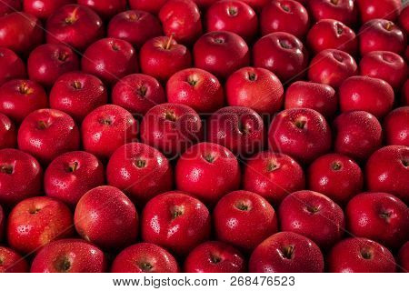 Fresh Juicy Apples Mac In The Water Droplets. The Background Image