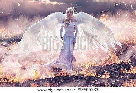 Fine art image. Stunning angel woman walking fields of fire