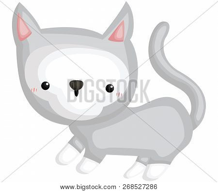 A Vector Of A Cute And Adorable Cat