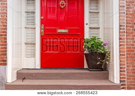 Red Door And Potted Plant On The Steps. Residence Front Entrance