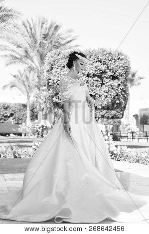 Wedding Dress. Beautiful Wedding Dress For Pretty Bride. Woman In Wedding Dress. Wedding Day For Wom