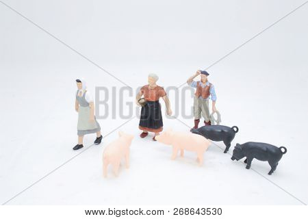 A Toy Farming People With The Pig