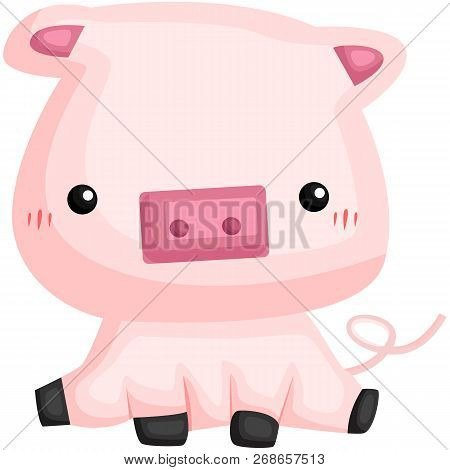 A Vector Of A Cute And Adorable Pig